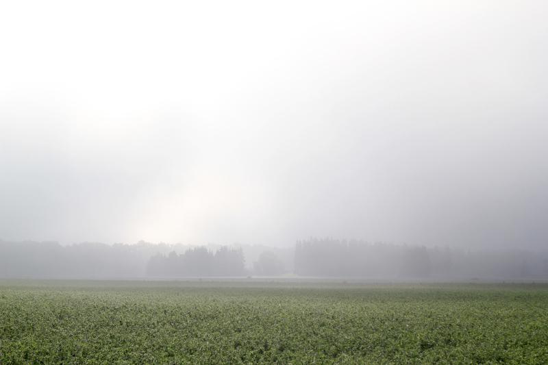Udutaolised kihtpilved Stratus nebulosus (St neb) (foto: Eve Kõrts, 2013)