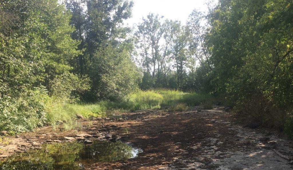 Valgu jõgi kuivas ära. Foto: Keskkonnaagentuur